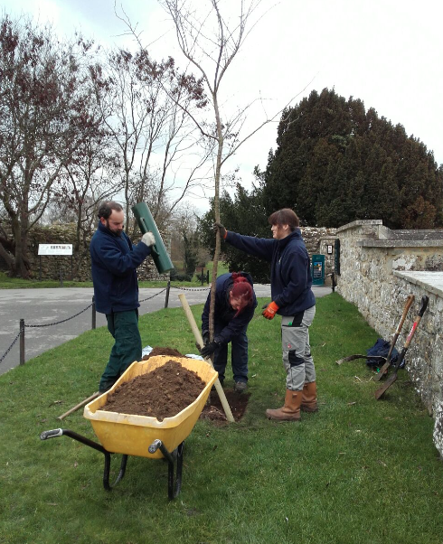 Tree planting at Leeds Castle