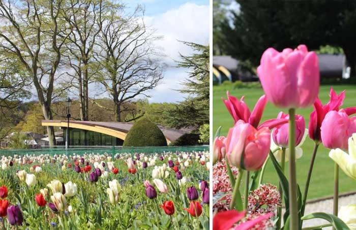 Spring-garden-tour-2